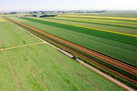 Die Rheiderländer Ackermarsch: Weites Land unter weitem Himmel
