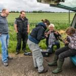 GPS Besenderung einer Wiesenweihe